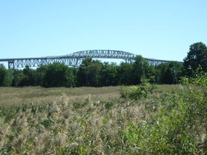Across the marshes, towards DE-9 Bridge over the C&D Canal (by Cathy Schwarz)
